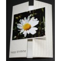 Birthday Greeting Cards - Made in BC - 07