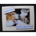 Pet Birthday Greeting Cards - Keta & Snuffles