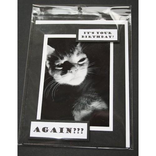 Cat Themed Birthday Card