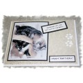 Pet Greeting Cards - Someone let the Cat outta the Bag - Birthday
