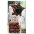 Birthday Wrap - Gift Bag,Tissue, Ribbons, Tag & Birthday Balloon
