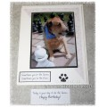 For the Love of Critters - Dog Birthday Greeting Card - Josie 01
