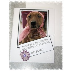 Dog Birthday Card - Gingerbread