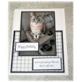 "Cat ""I'm Still Cuter"" Birthday Card"