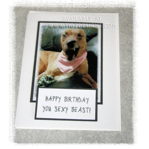 Happy Birthday You Sexy Beast Dog Greeting Card