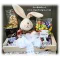 Big Harey Deal Gift Basket -  BC Gift Baskets by Tigz Designs