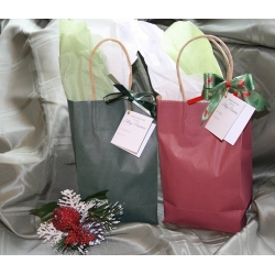 """Custom"" Occasion Gift Bags - Small Christmas"