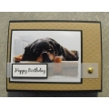 Happy Birthday Greeting Card - Rico