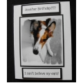 Pet Birthday Greeting Card - Keta