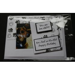 Dog Birthday Greeting Cards - Winston
