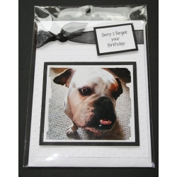 Dog Birthday Greeting Cards - Bailey