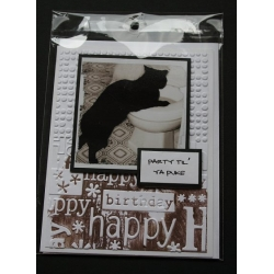 Cat Birthday Greeting Card - Pickles
