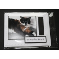 Sarcastic Cat Birthday Greeting Card - Cassia