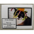 Funny Cat Birthday Cards - Cassia 43
