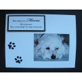 Pet Sympathy Greeting Cards - Muffy 40