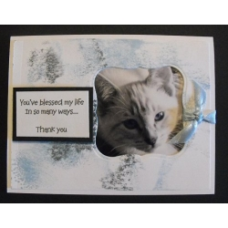 Pet Thank You Greeting Card - Snuffles 53