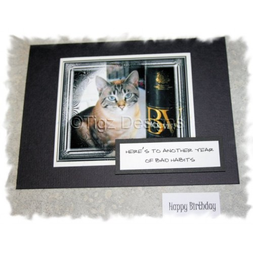 Funny Cat Birthday Cards Bad Habits Snuffles