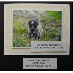 Comical Pet Birthday Cards - made in BC - Mikey 38