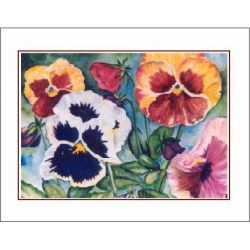 "Watercolor Prints by Laura Leeder of Creston BC - ""And the winner is..."""